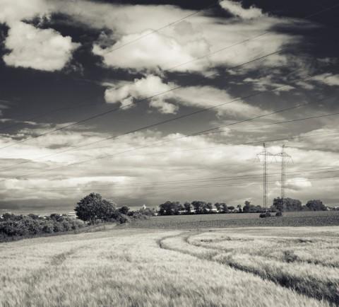 Ječmenové pole před bouří