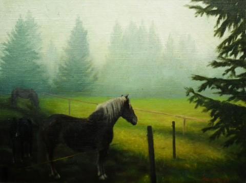 V Jizerských horách